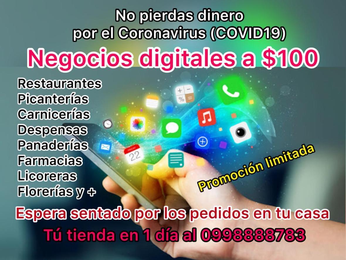 Negocios Digitales en Guayaquil, Quito, Cuenca, Manta, tiendas economicas no pierdas dinero por el coronavirus covid19 en ecuador